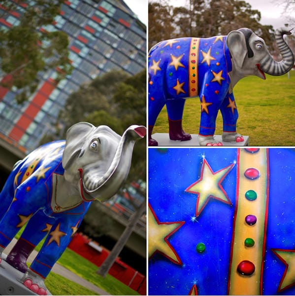 Beautiful elephants in Melbourne CBD at Crown Casino