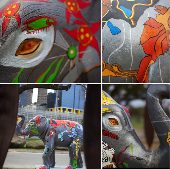 Elephants are in Melbourne - MCG