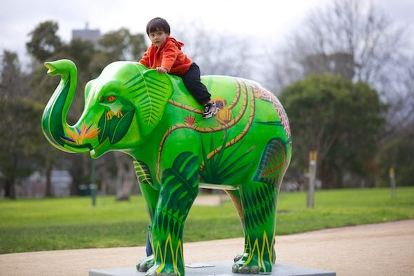 The elephants in Melbourne are there from August to September 2012