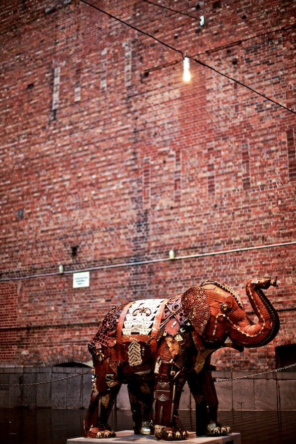 Rusty Mali - Our favourite elephant in Melbourne