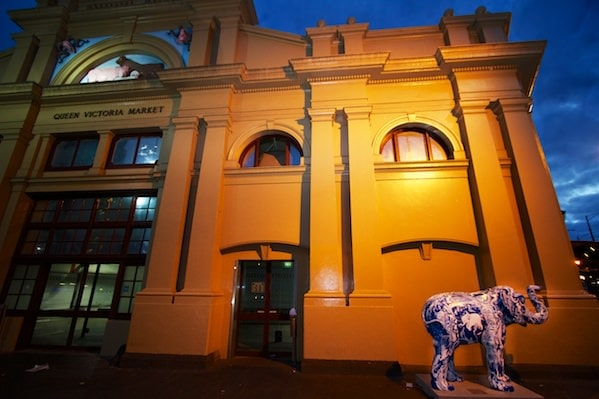 50 Elephants in Melbourne - Why are there so many elephants? The Melbourne Zoo is celebrating!