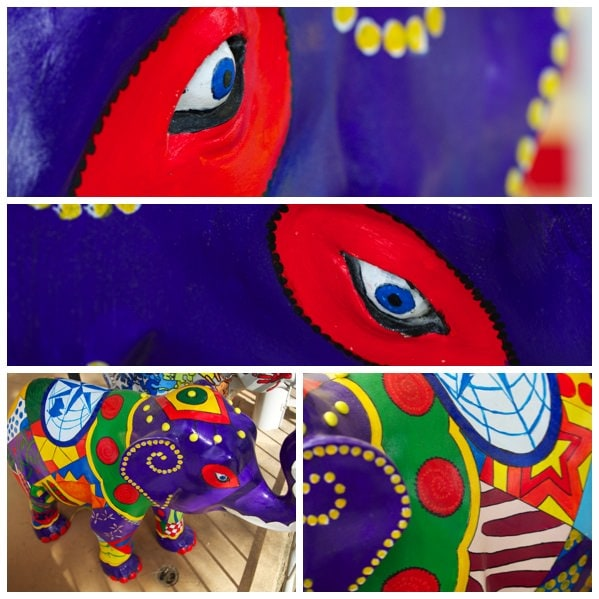 Bairnsdale West Primary School Mali Elephant