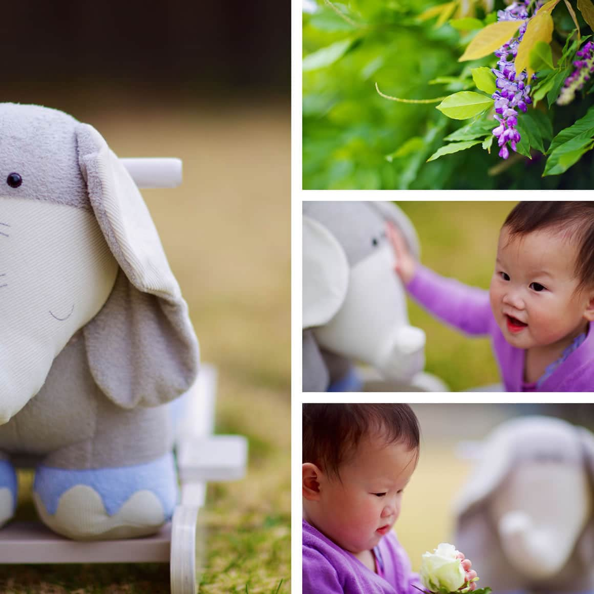 baby portraits & photography in Melbourne
