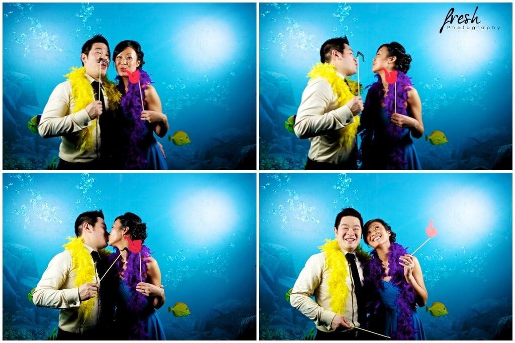 photobooth fish - aquarium