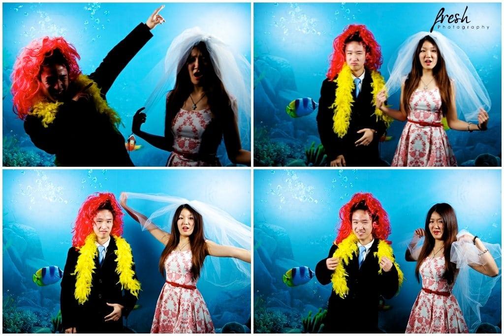 aquarium photo corner