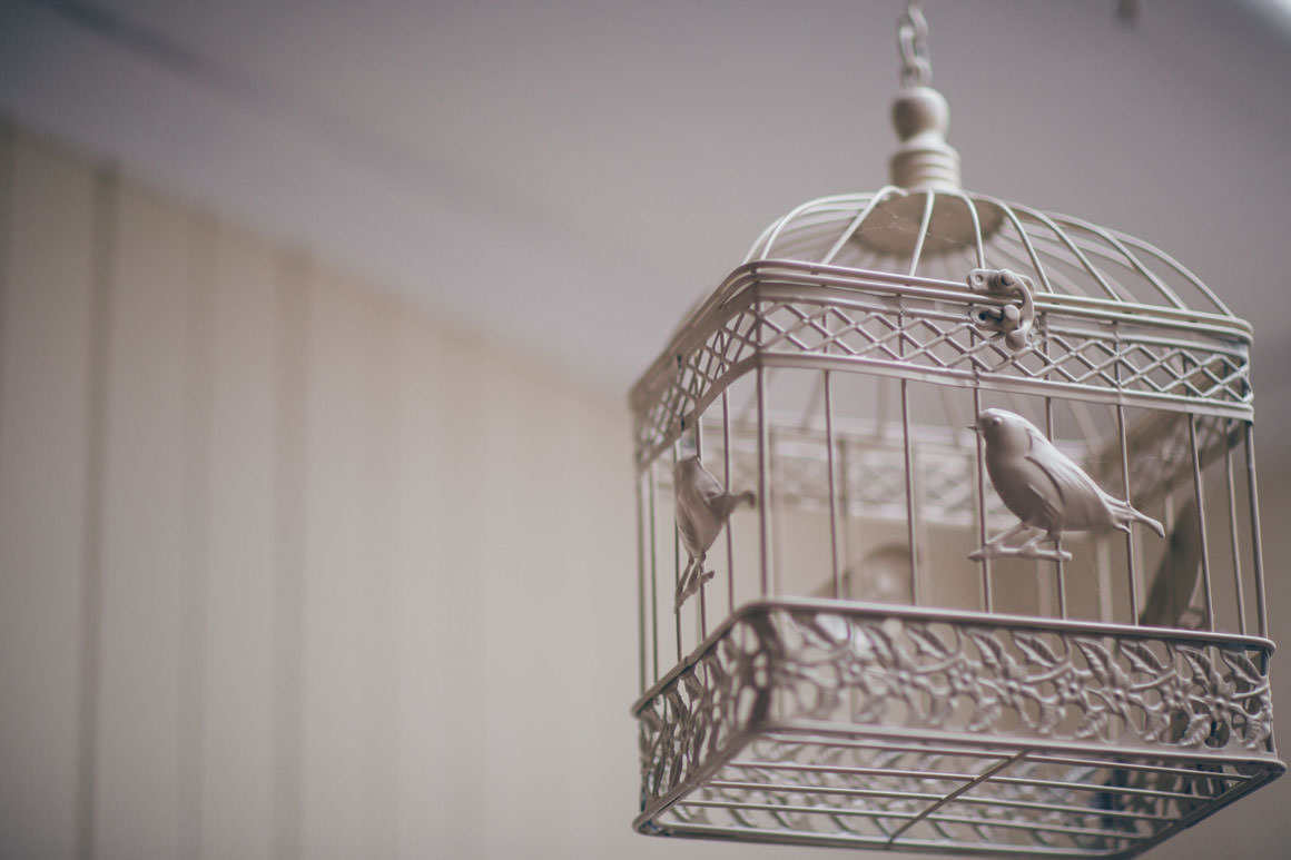 bridal birdcage - dove