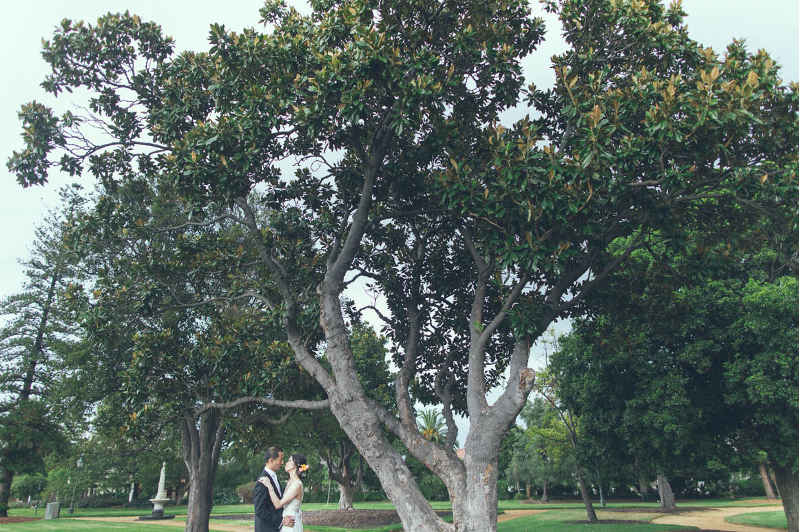 tree wedding