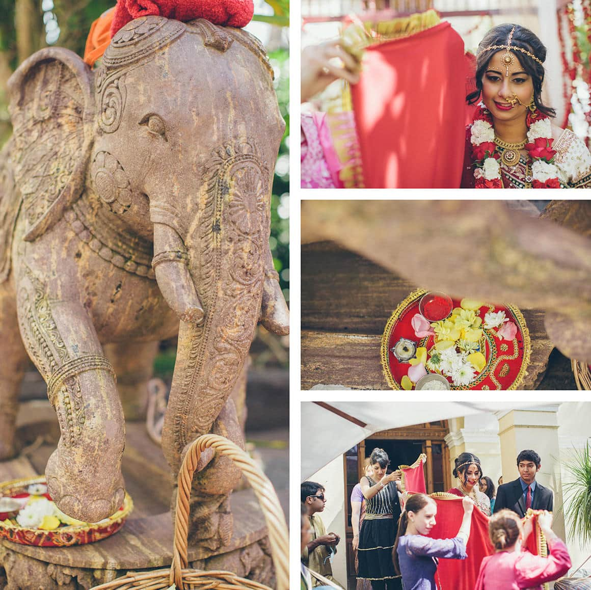 indian-elephant-at-wedding