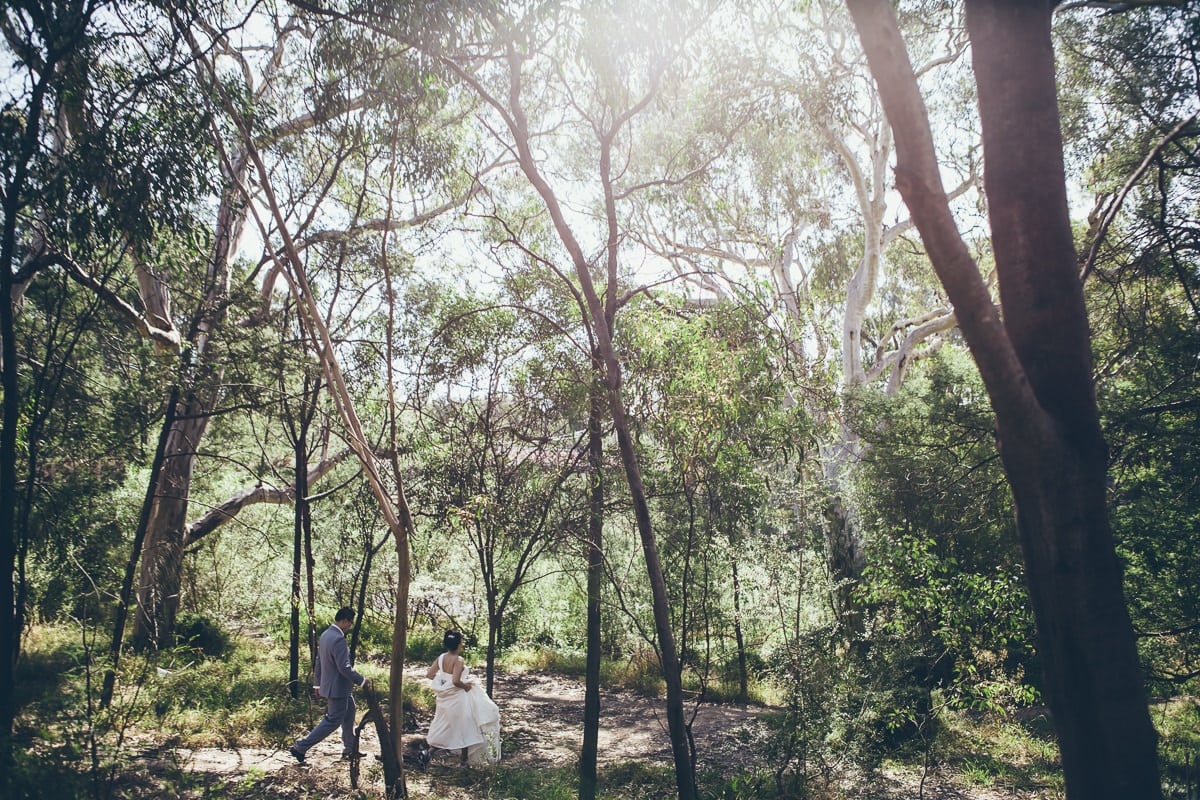 asian wedding photographers in melbourne  - walking through the park - sunlight backlit