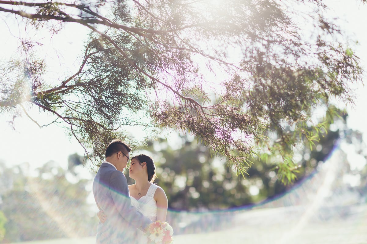 vietnamese wedding - asian wedding photographer melbourne - at The Boulevard in Kew
