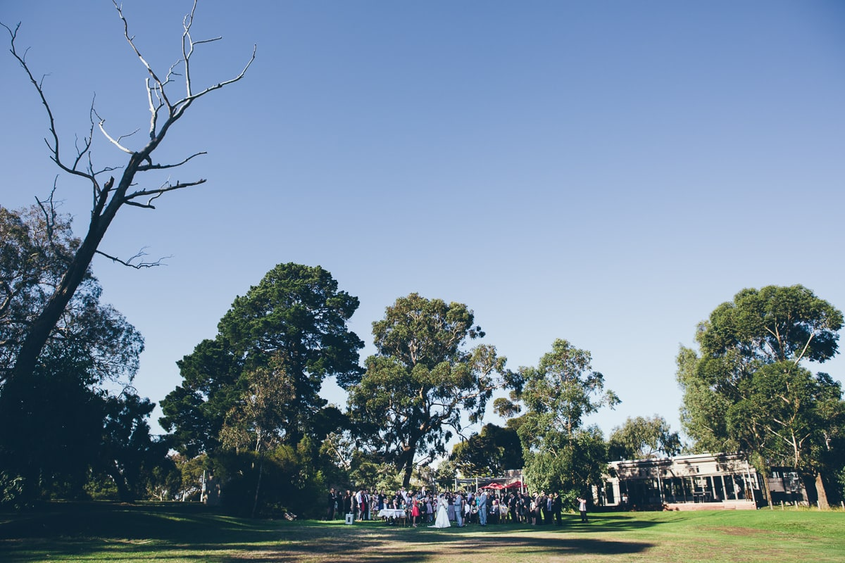 park wedding ceremony - outdoor photography