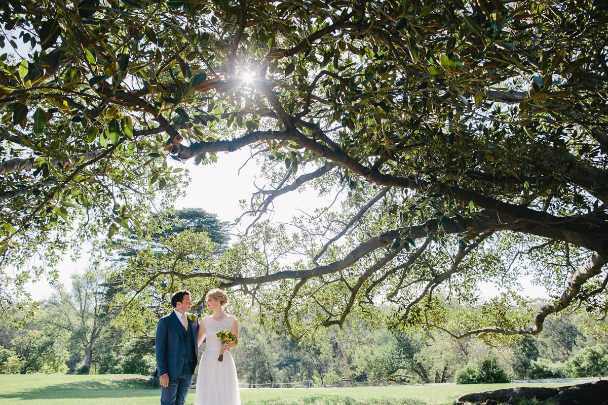 Backlit tree and beautiful couple at wedding in kew - studley park boathouse