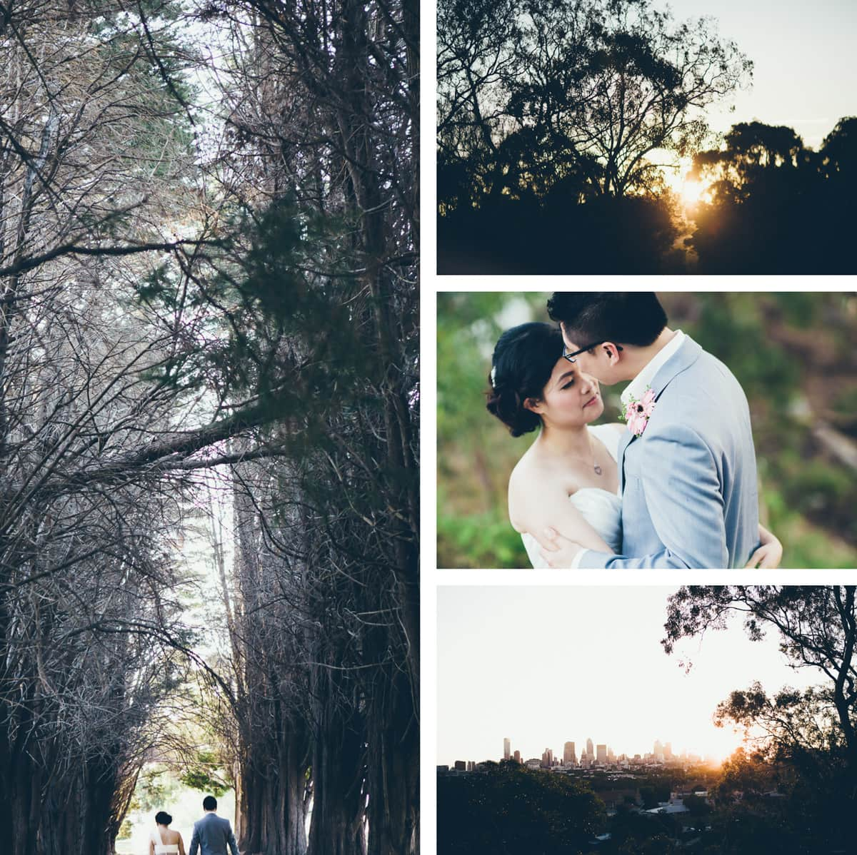 best asian wedding photographer in melbourne - location in kew (melbourne - studley park) tree line and wedding couple