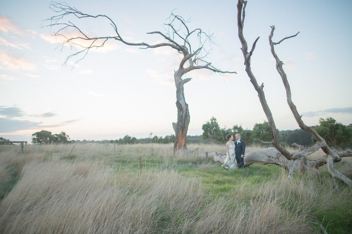 rustic wedding photographer - old trees and farmland with wedding couple