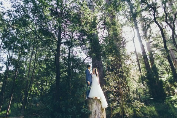 what a wedding - stunning melbourne wedding photography in the forest around melbourne - best melbourne wedding photography in 2016