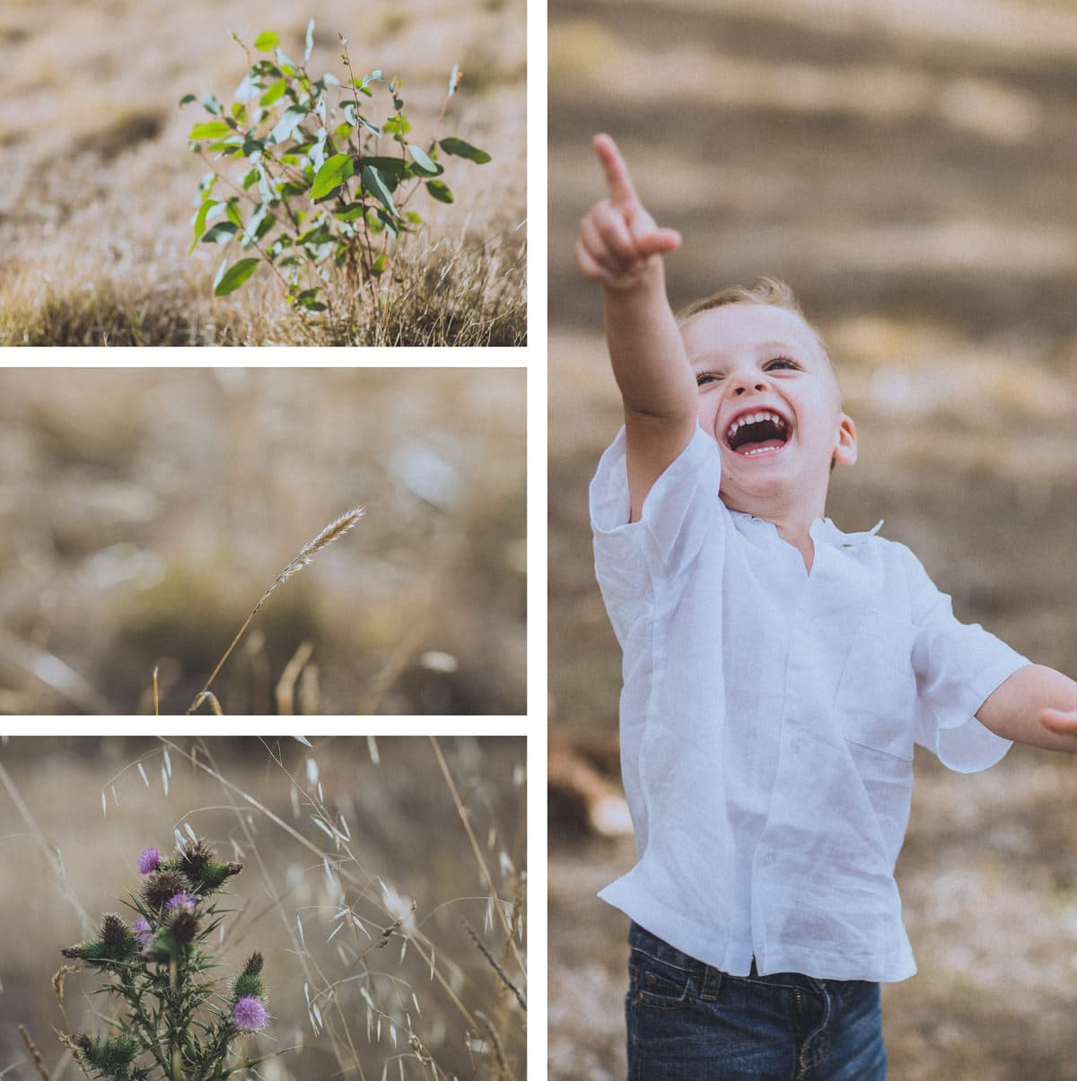 Templestowe kids photography