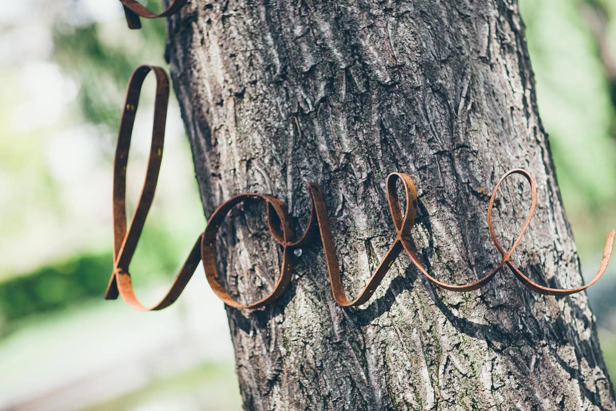 love sign on tree