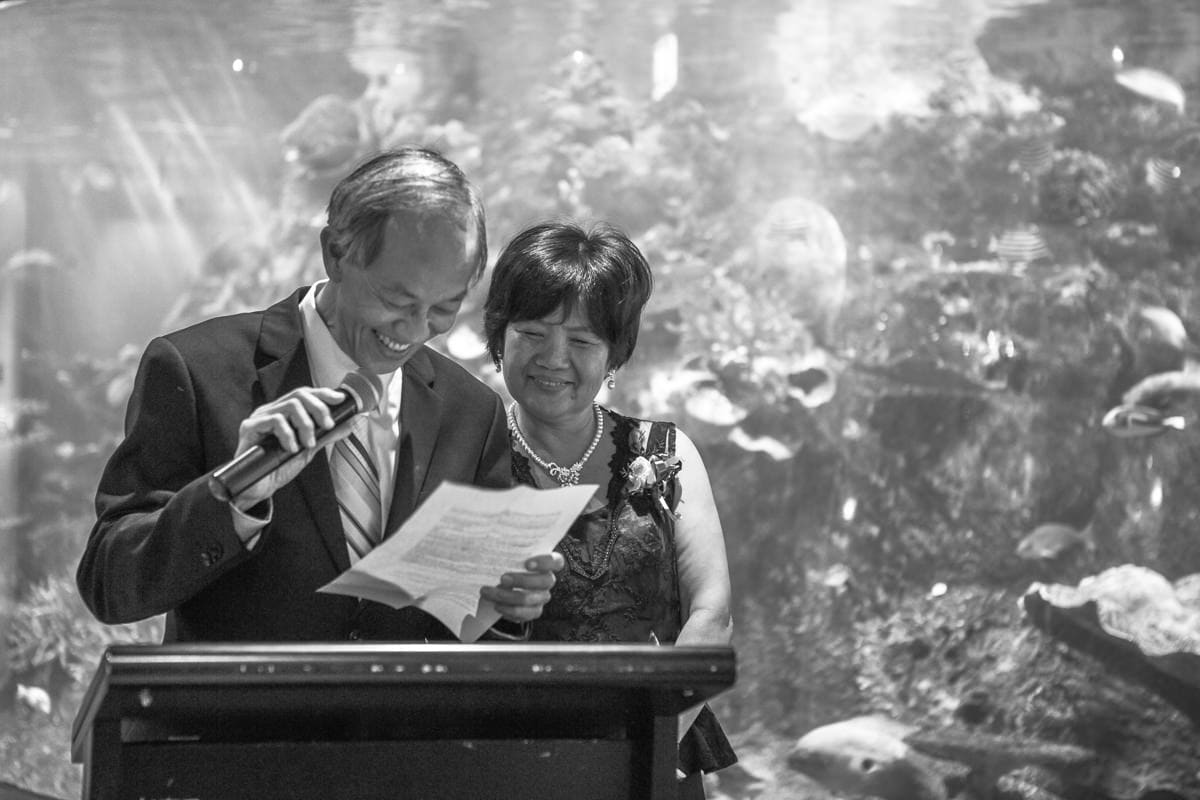 melbourne wedding at the aquarium - unique wedding venues in melbourne
