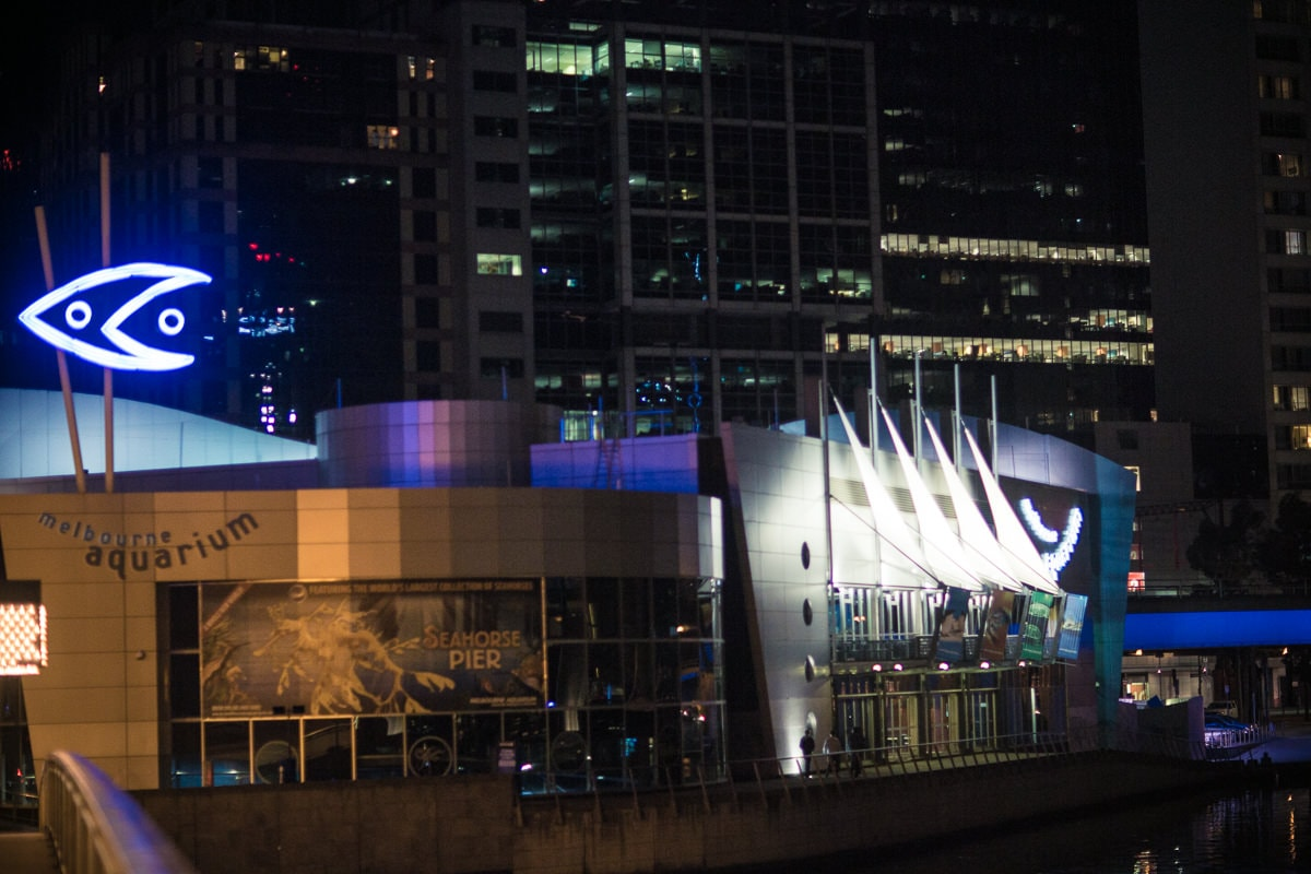 melbourne aquarium nighttime