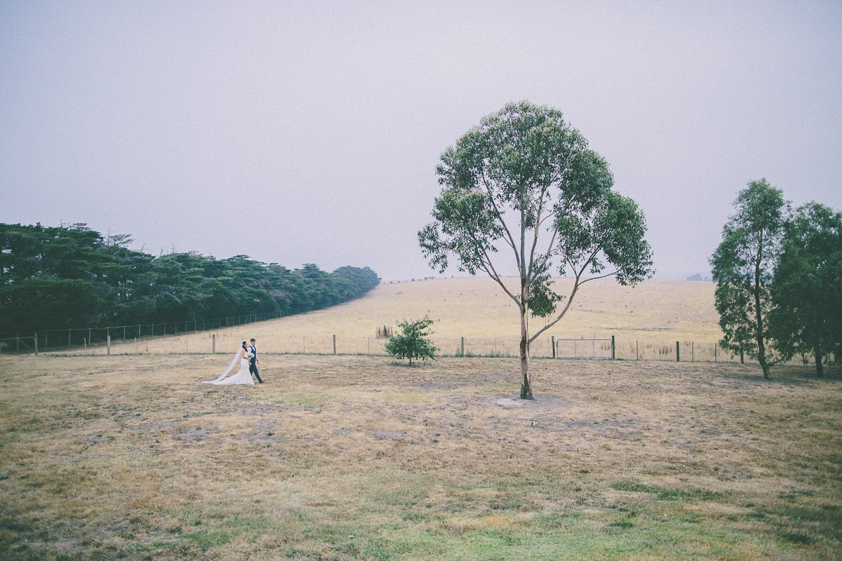 tree with hills and wedding couple