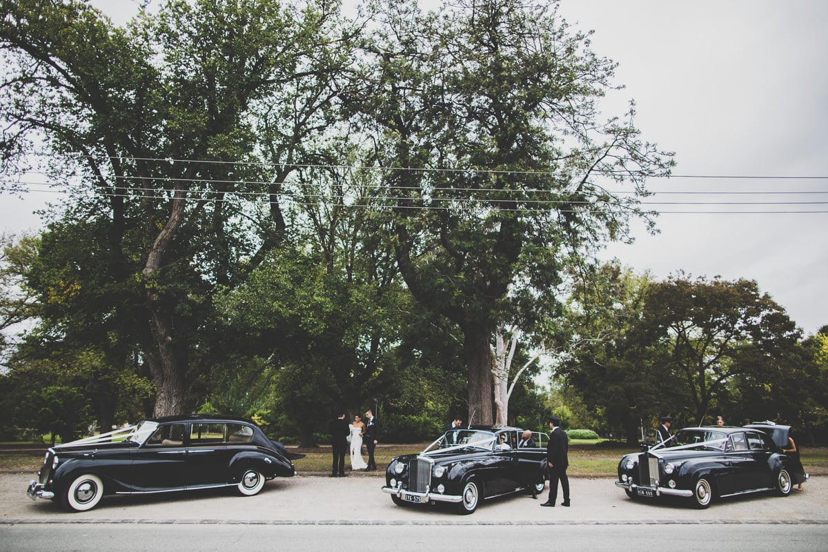 vintage cars at wedding - three cars at melbourne wedding - beautiful photograph