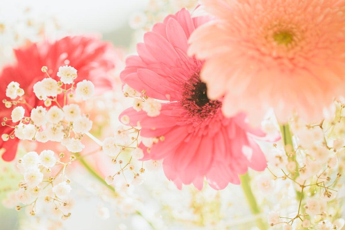 flowers - party decoration ideas