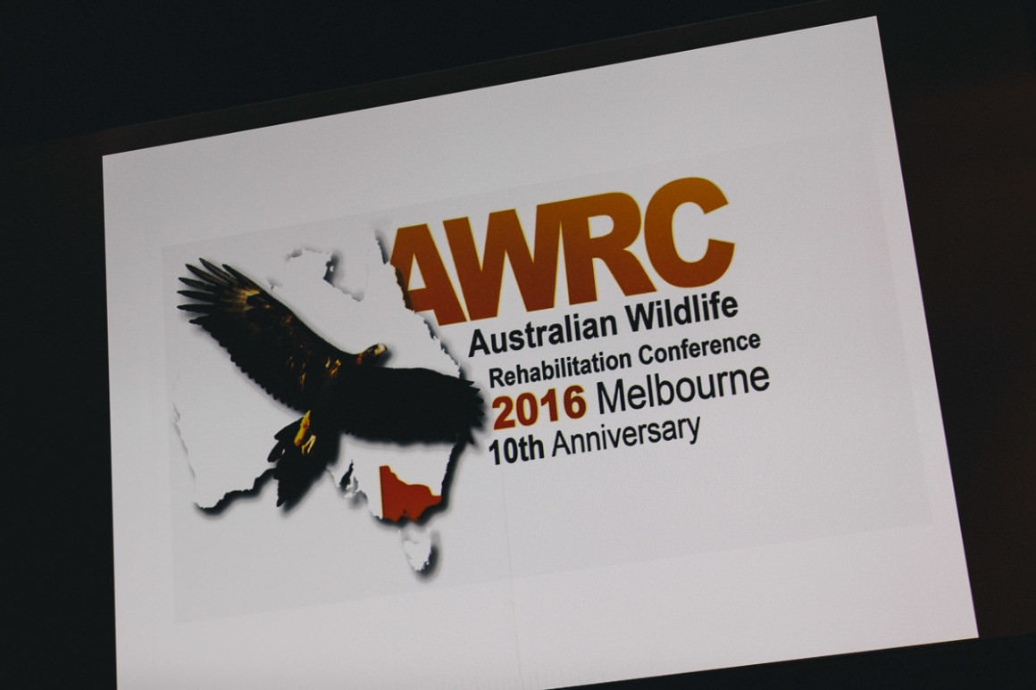 Melbourne Conference Photography