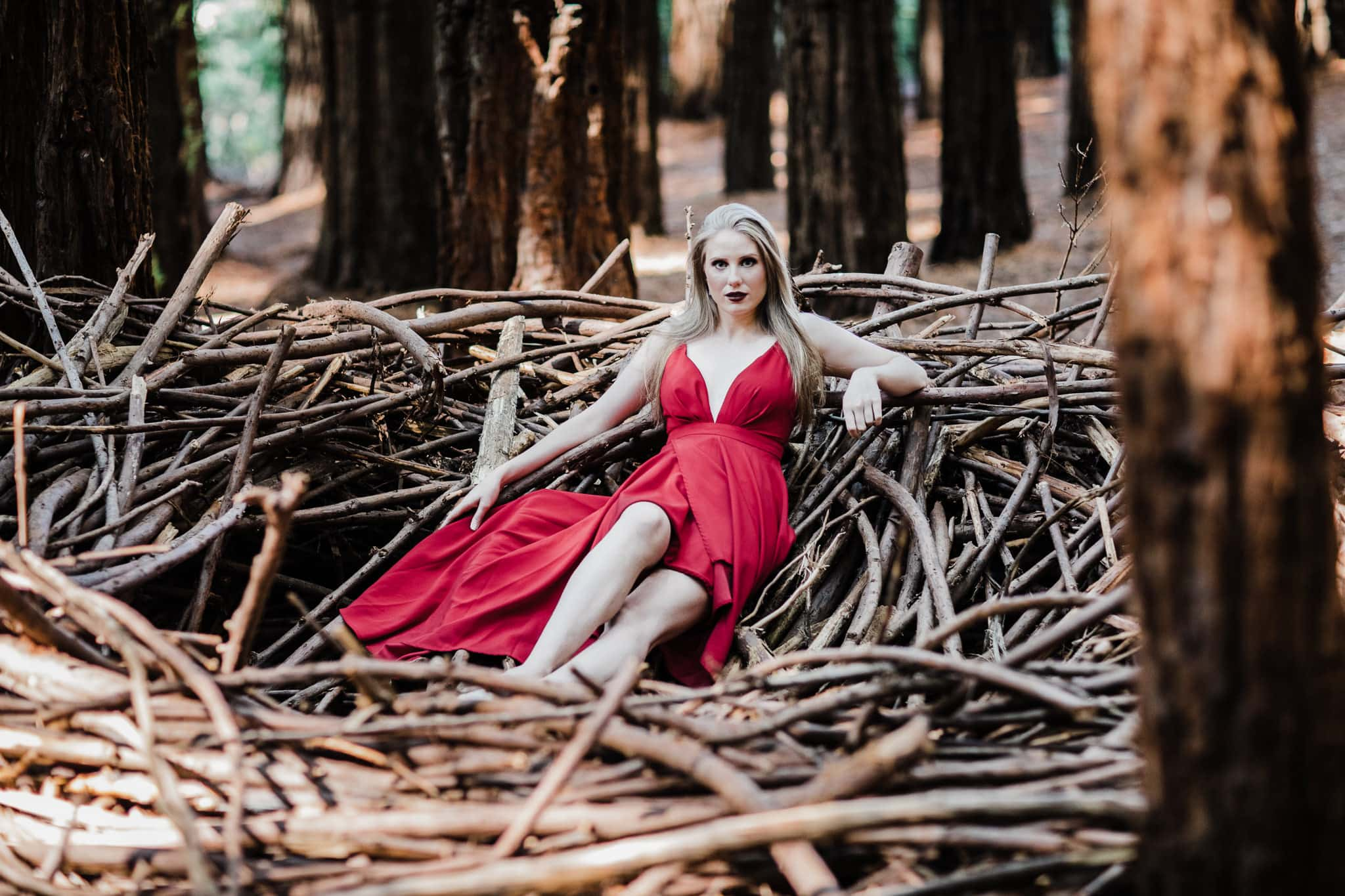girl posing in nest in red dress