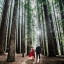 A Magical Forest – Outdoor Couples Photography