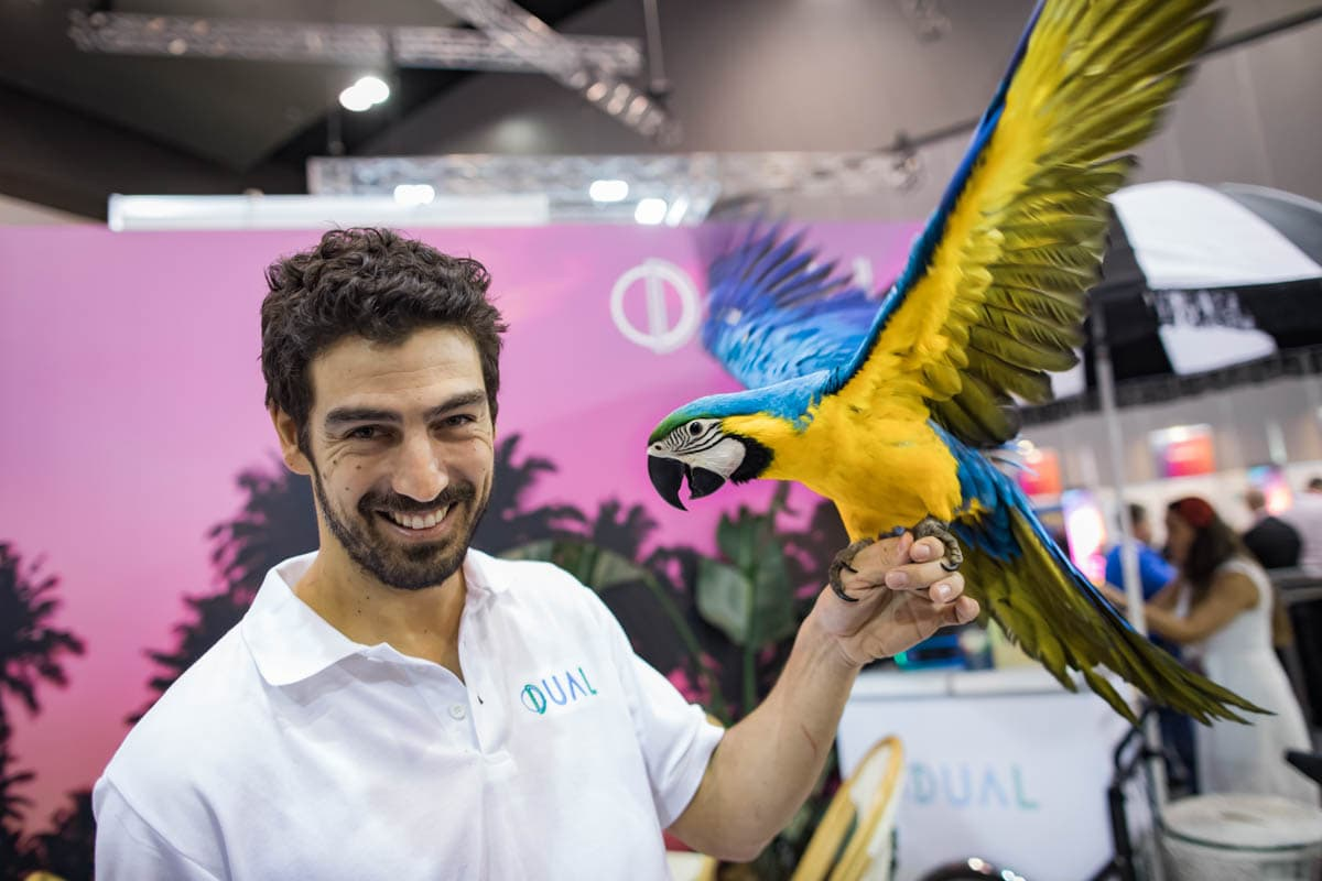 parrot for PR and Marketing in Melbourne - Creative Photography for commercial showcase